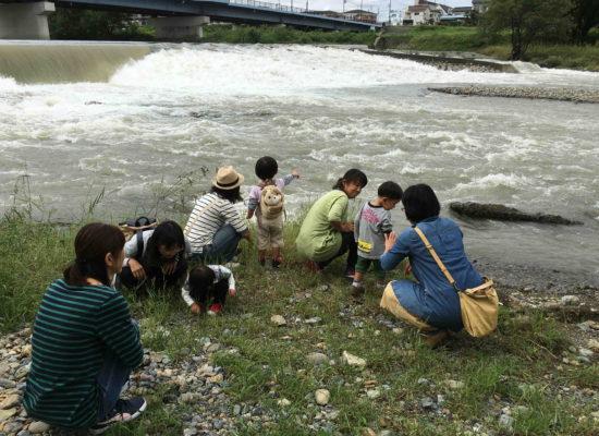 めだかの学校プロジェクト・はじめての川あそび2が開催されました