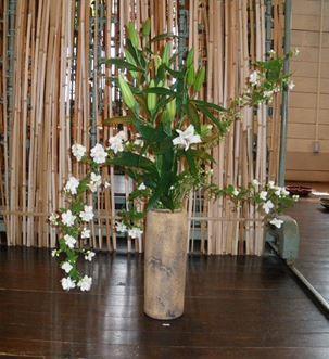 sakaguchikikuphoto2