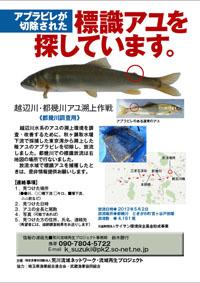 tokigawa55-001